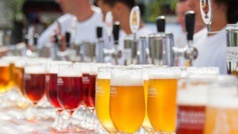 Belgian Beer&Brewery Tours
